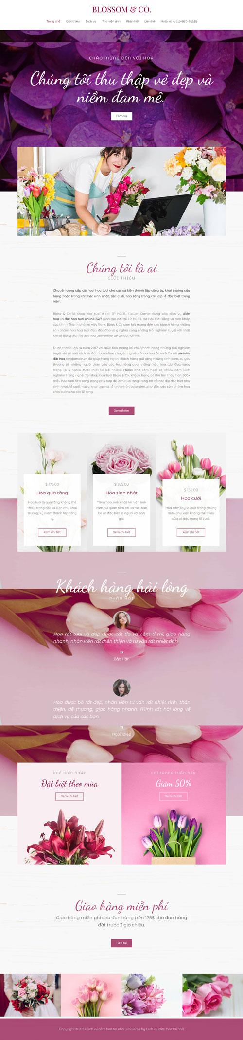 website-dich-vu-cam-hoa