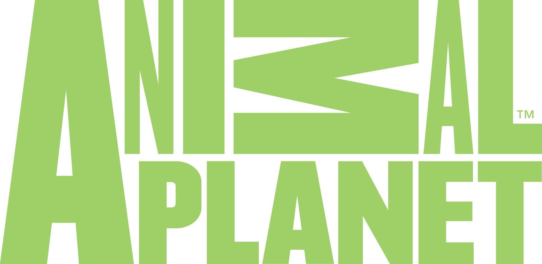 logo kênh truyền hình animal planet